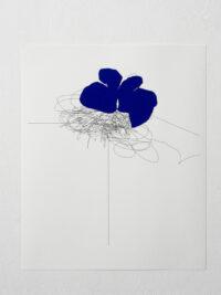 Blue butterfly, 2005