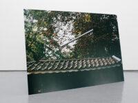 Throw, 2005