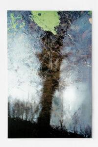 Tree 2, 2008