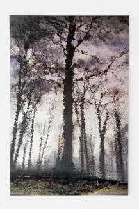 Tree 3, 2008