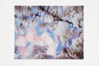 Blossom – brushes, 2009