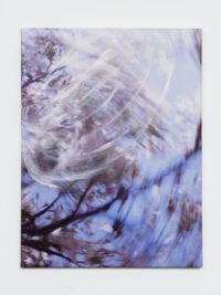 Blossom – storm, 2010